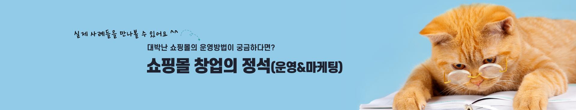 쇼핑몰창업의정석-도서홍보